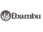 Ebambu coupon code
