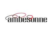 Ambesonne coupon code