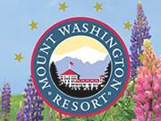 Omni Mount Washington Resort discount codes