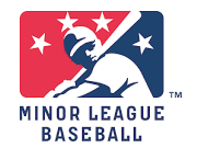 MiLB coupon and promotional codes