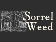 Ghosts and Gravestones Savannah Tour