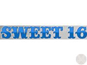 NCAA Sweet 16 discount codes