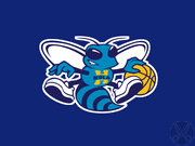 New Orleans Hornets coupon